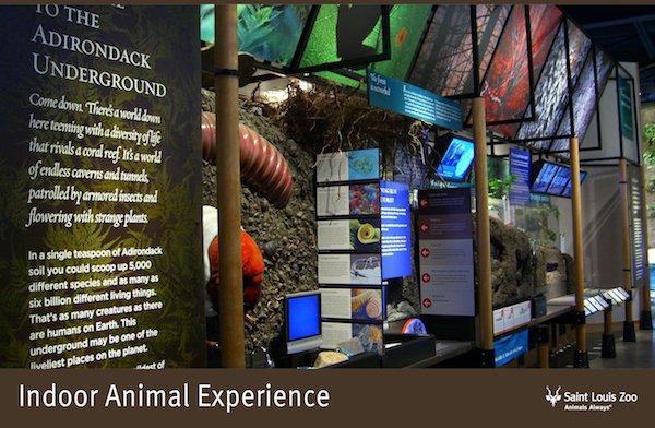 Rendering_Indoor Animal Experiences_Saint Louis Zoo.jpg