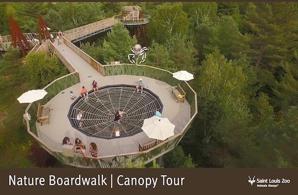 Rendering_Nature Boardwalk Canopy Tour 2_Saint Louis Zoo.jpg