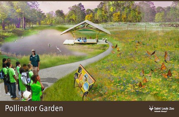 Rendering_Pollinator Garden_Saint Louis Zoo.jpg