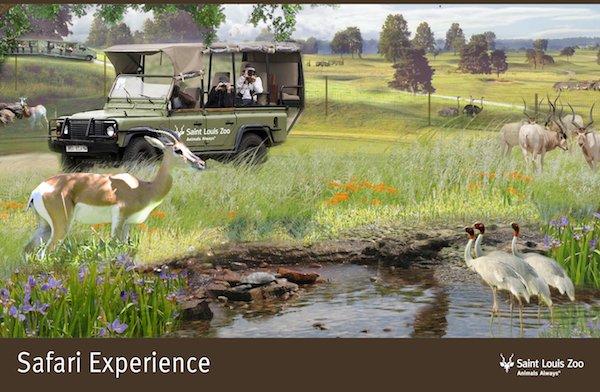 Rendering_Safari Experience_Saint Louis Zoo.jpg