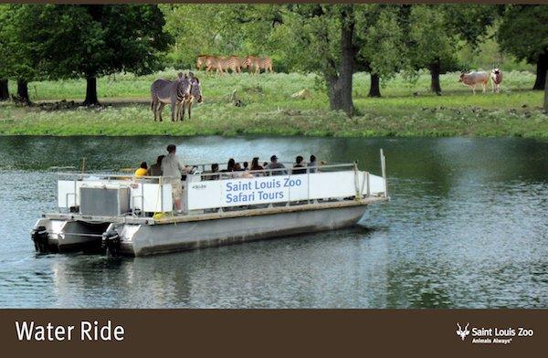 Rendering_Water Ride_Saint Louis Zoo.jpg
