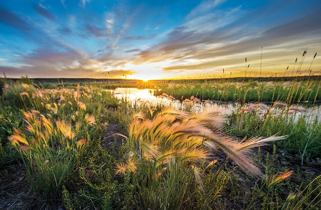 Wyoming_High_Desert_0413ADFRGB.jpg