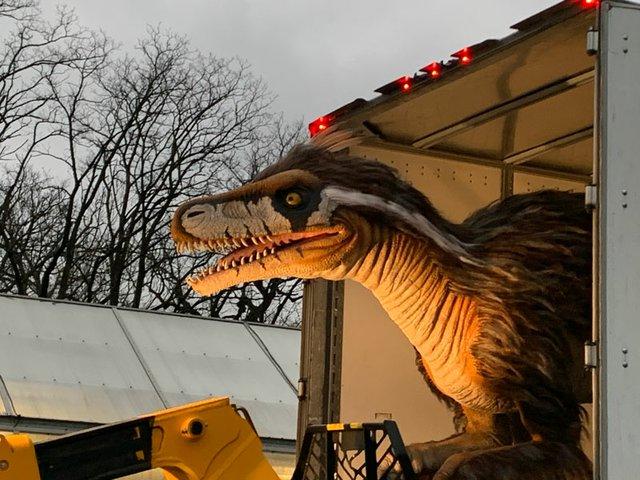 Utahraptor_arrival 3-15-21_Saint Louis Zoo_web.jpg