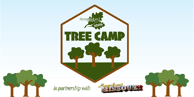 tree camp.png