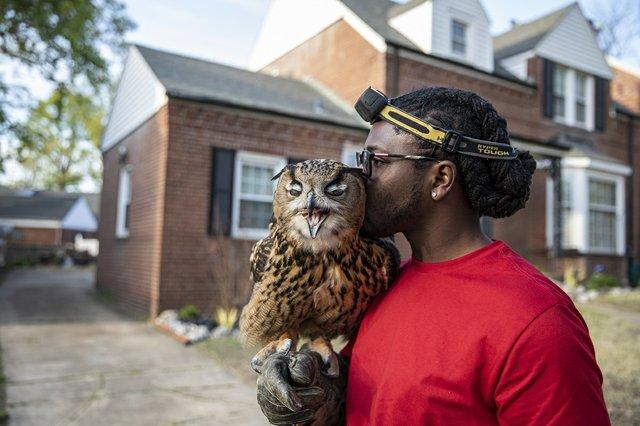 Donovan Meeks and Eli the owl