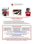 FLYER - FY21 2 Virtual Volunteer Fair - KP (4).jpg