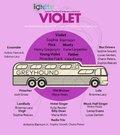 Violet casr 712.jpg