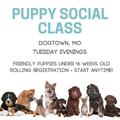 Puppy Social Class.png